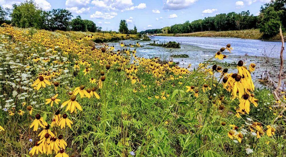 Clinton River Spillway